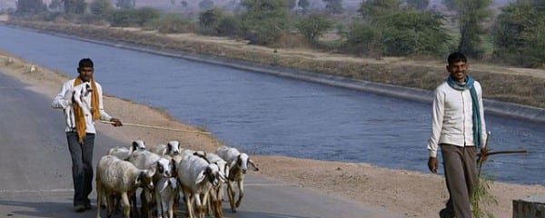 640px-Shepherds,_Chambal,_India