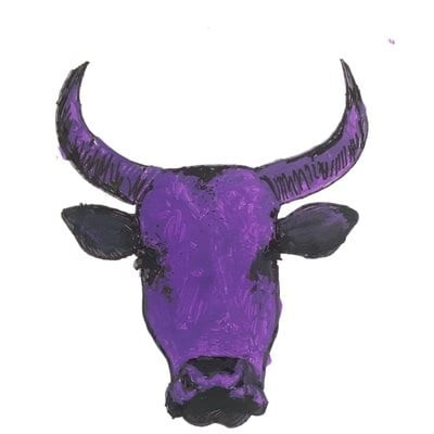 """South Africa: The """"Purple Cow"""" party is proposing a Negative Income Tax form of basic income"""